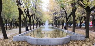 otoño en el Parque Egido